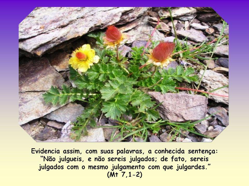 Evidencia assim, com suas palavras, a conhecida sentença: Não julgueis, e não sereis julgados; de fato, sereis julgados com o mesmo julgamento com que julgardes.