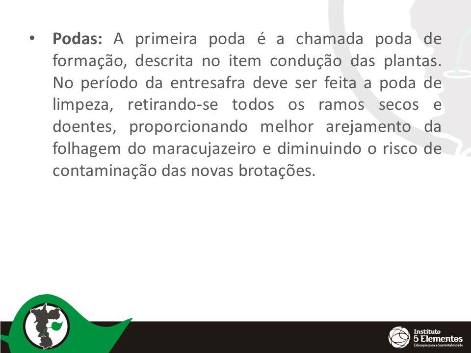Podas: A primeira poda é a chamada poda de formação, descrita no item condução das plantas.
