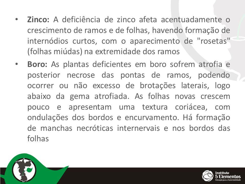 Zinco: A deficiência de zinco afeta acentuadamente o crescimento de ramos e de folhas, havendo formação de internódios curtos, com o aparecimento de rosetas (folhas miúdas) na extremidade dos ramos