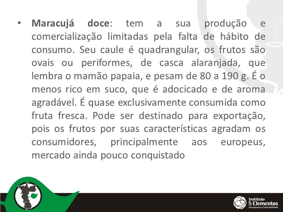 Maracujá doce: tem a sua produção e comercialização limitadas pela falta de hábito de consumo.