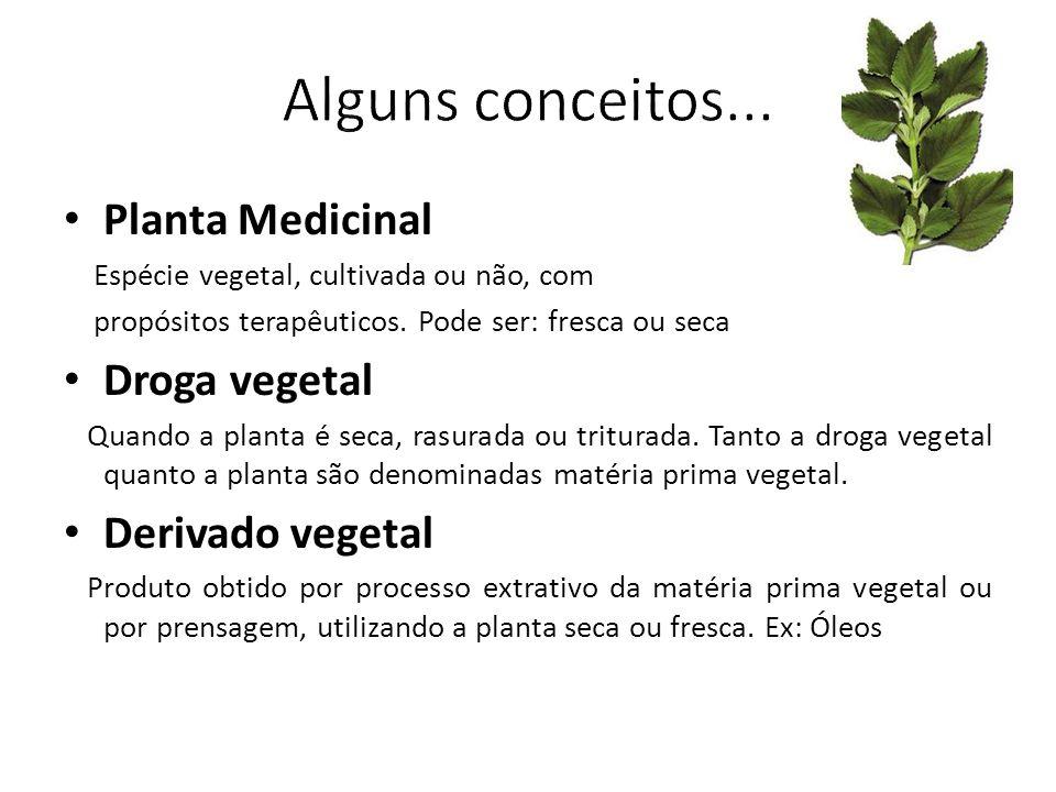 Alguns conceitos... Planta Medicinal Droga vegetal Derivado vegetal