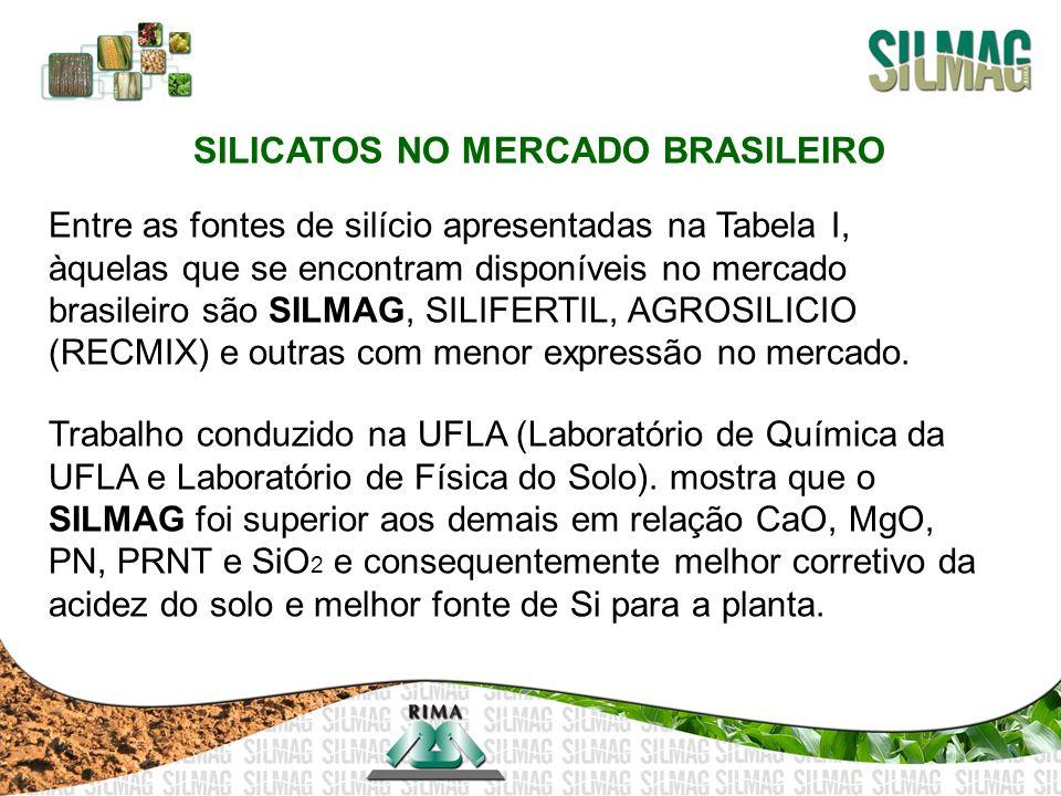 SILICATOS NO MERCADO BRASILEIRO