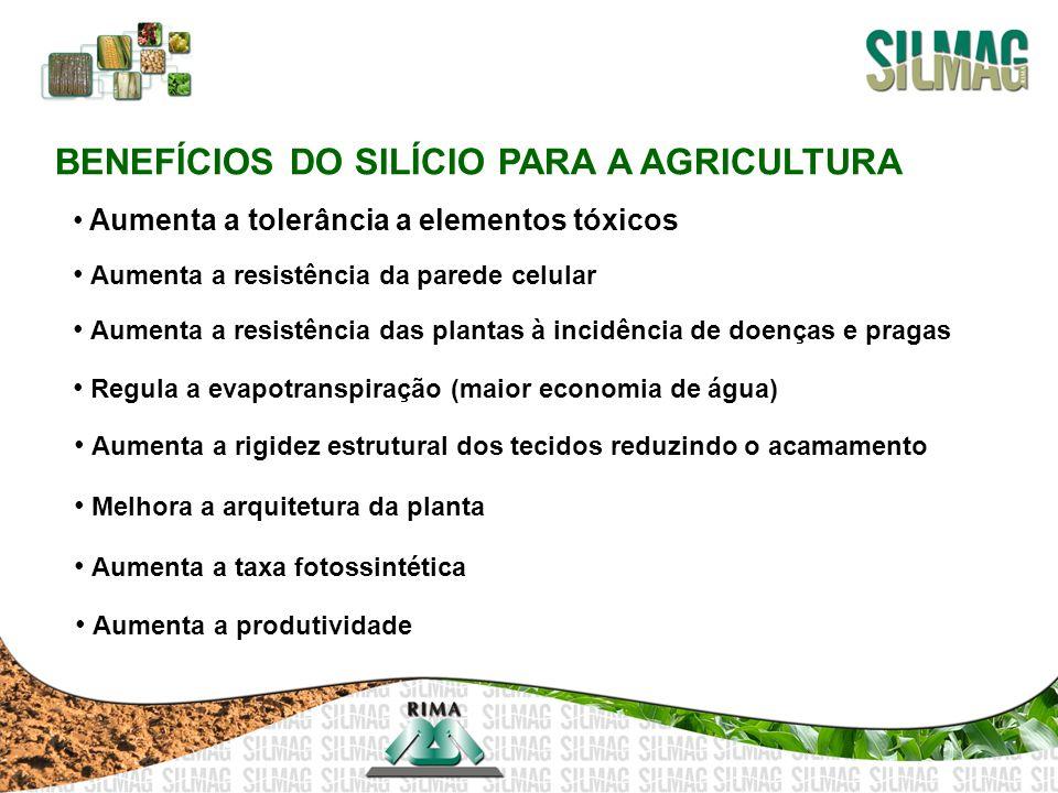 BENEFÍCIOS DO SILÍCIO PARA A AGRICULTURA