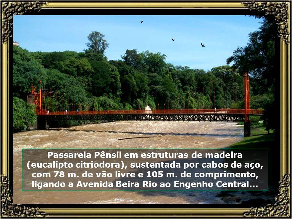 Passarela Pênsil em estruturas de madeira (eucalipto citriodora), sustentada por cabos de aço, com 78 m.