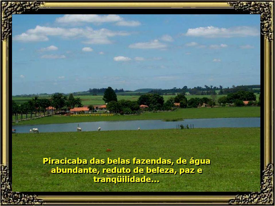 Piracicaba das belas fazendas, de água abundante, reduto de beleza, paz e tranqüilidade...