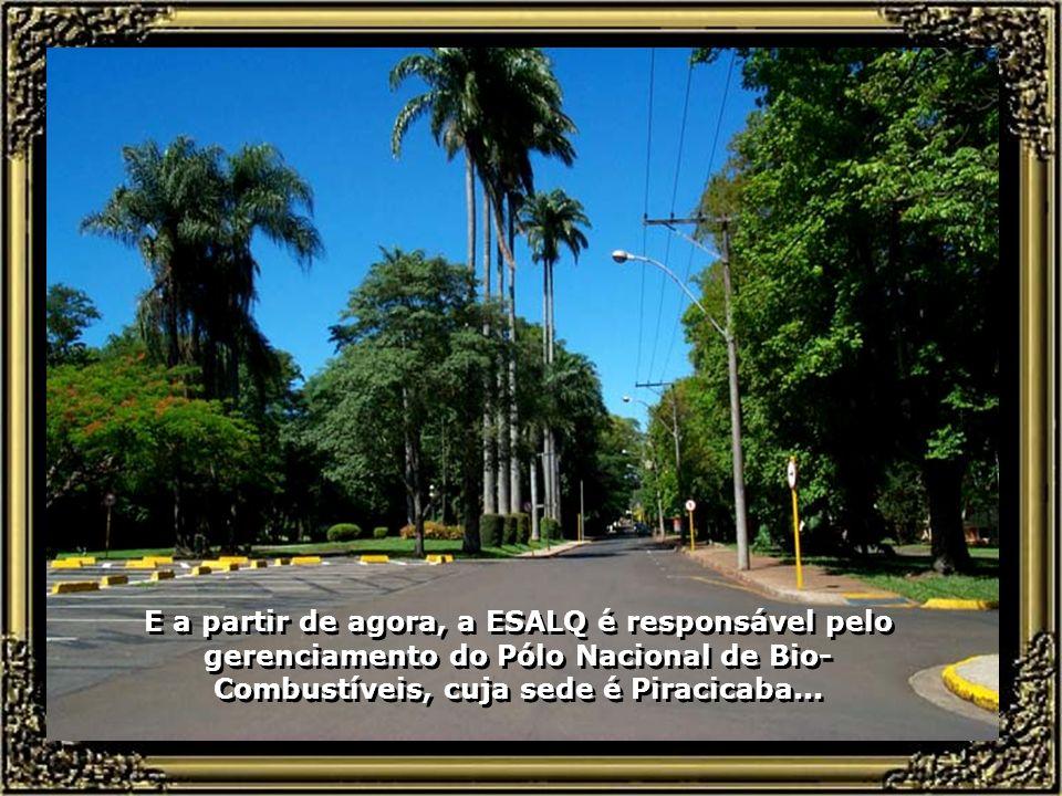 E a partir de agora, a ESALQ é responsável pelo gerenciamento do Pólo Nacional de Bio-Combustíveis, cuja sede é Piracicaba...