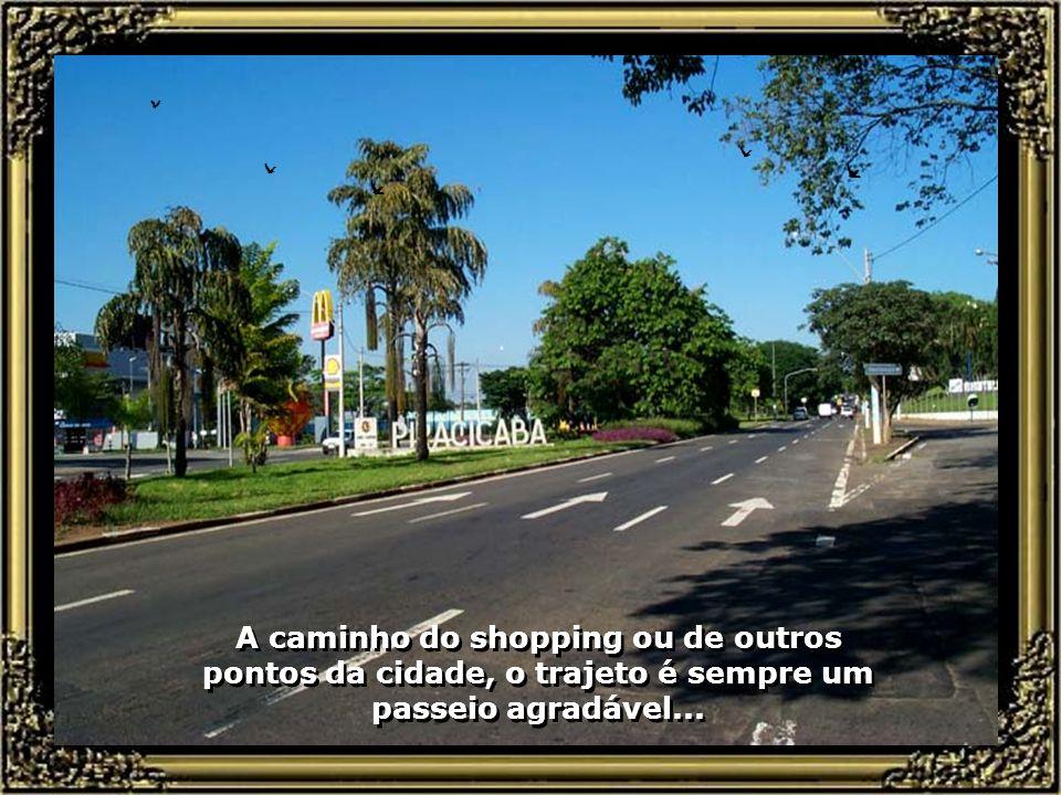 A caminho do shopping ou de outros pontos da cidade, o trajeto é sempre um passeio agradável...
