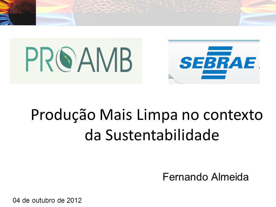Produção Mais Limpa no contexto da Sustentabilidade