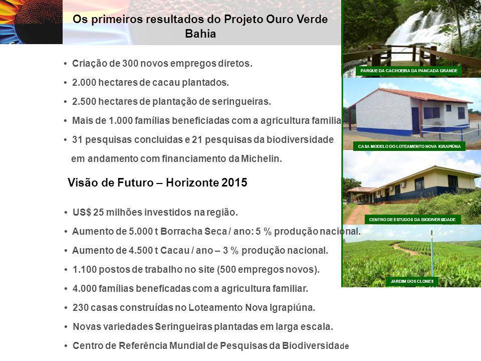 Os primeiros resultados do Projeto Ouro Verde Bahia