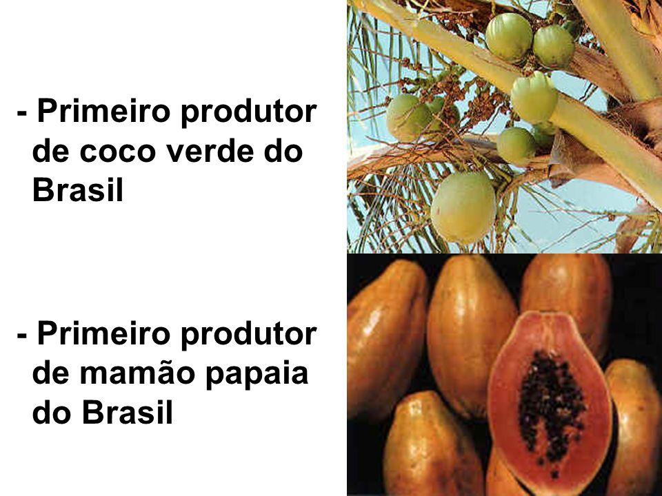- Primeiro produtor de coco verde do Brasil