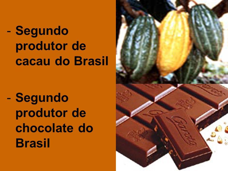 Segundo produtor de cacau do Brasil