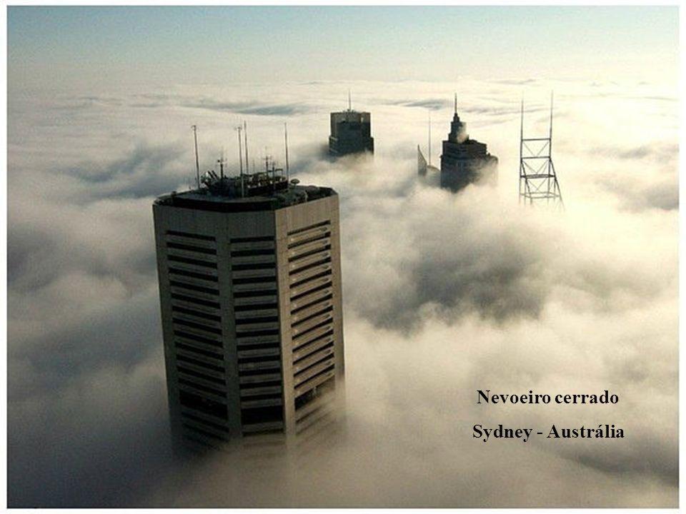 Nevoeiro cerrado Sydney - Austrália