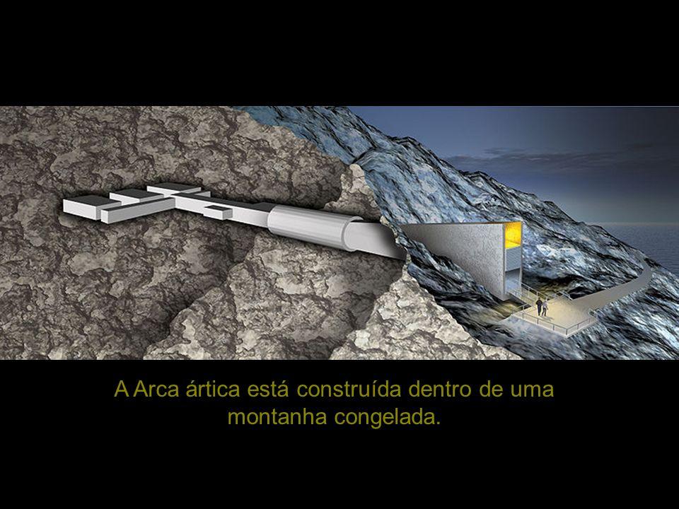 A Arca ártica está construída dentro de uma montanha congelada.