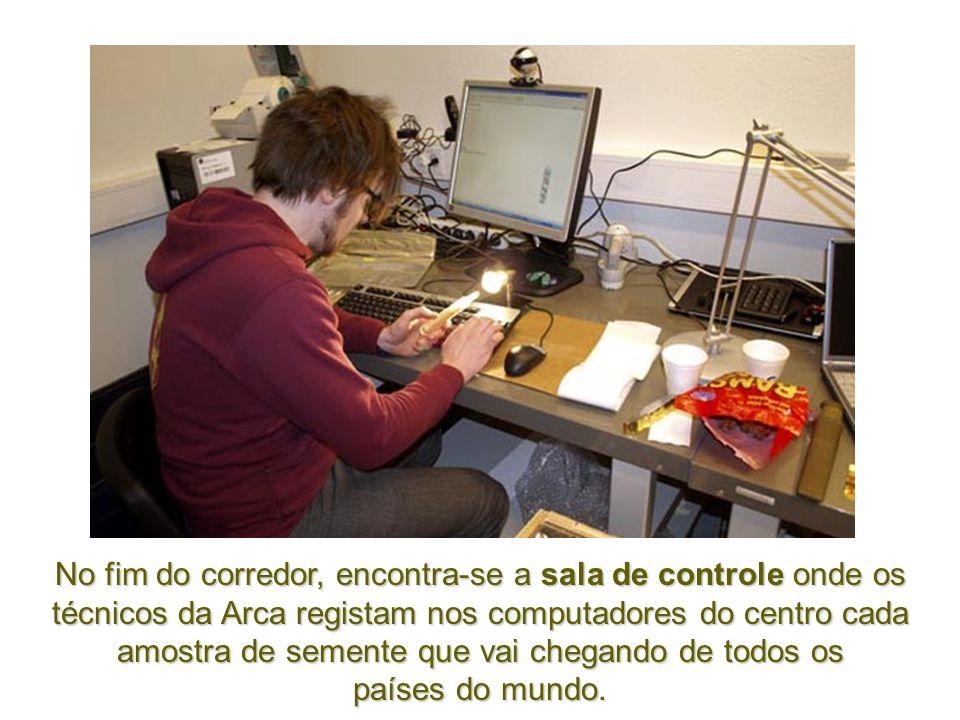 No fim do corredor, encontra-se a sala de controle onde os técnicos da Arca registam nos computadores do centro cada amostra de semente que vai chegando de todos os