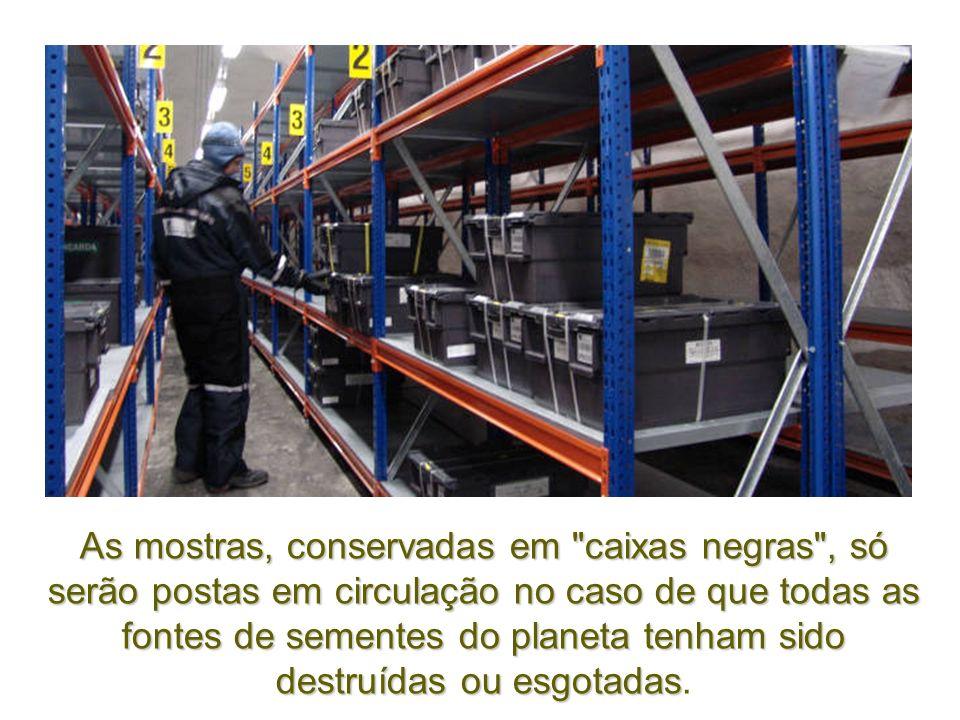 As mostras, conservadas em caixas negras , só serão postas em circulação no caso de que todas as fontes de sementes do planeta tenham sido destruídas ou esgotadas.