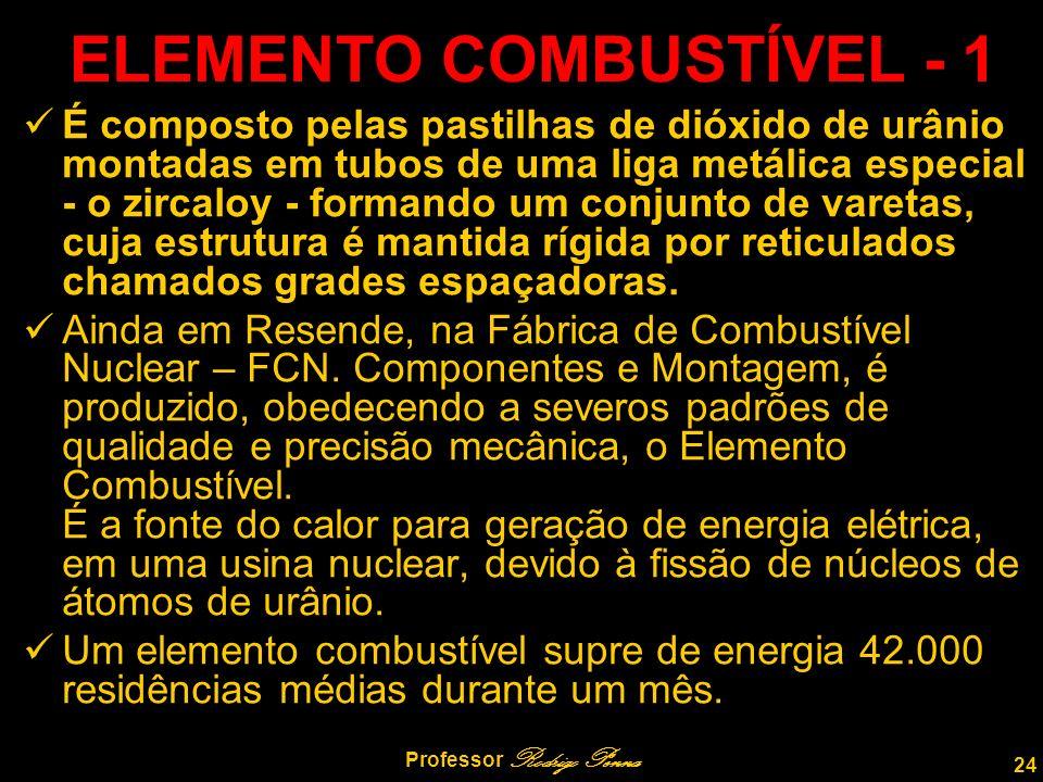 ELEMENTO COMBUSTÍVEL - 1