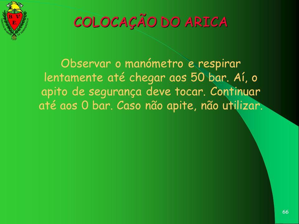 COLOCAÇÃO DO ARICA