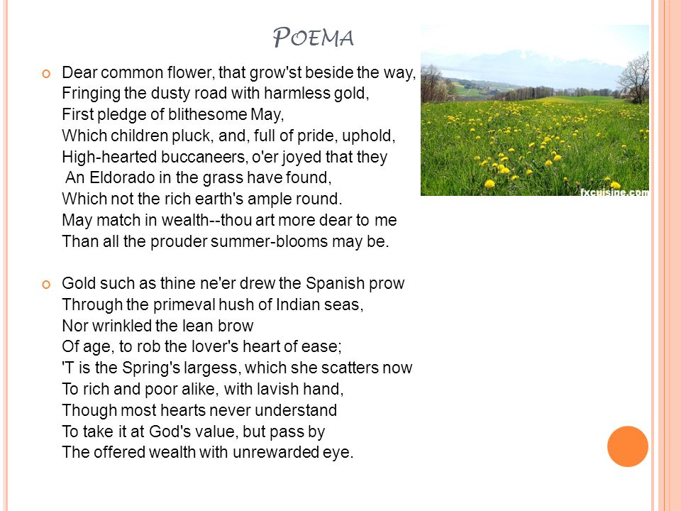 Poema Dear common flower, that grow st beside the way,