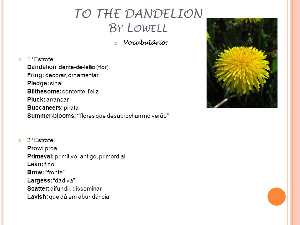 TO THE DANDELION By Lowell