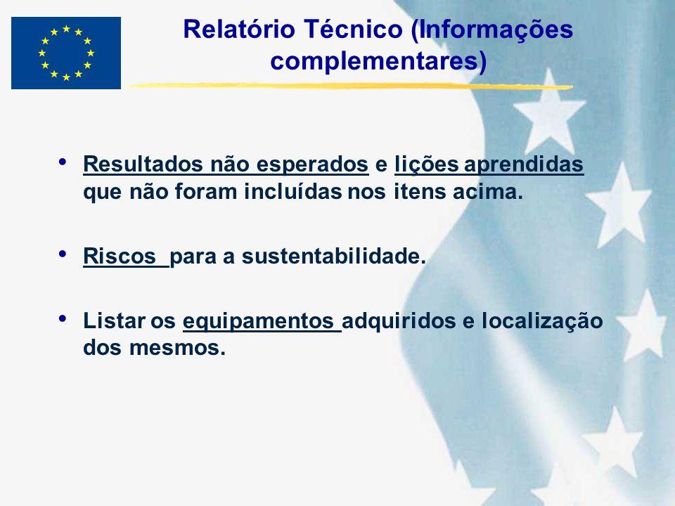 Relatório Técnico (Informações complementares)