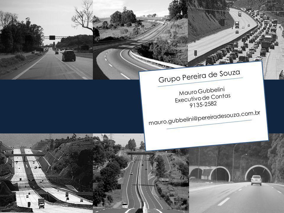 Grupo Pereira de Souza Mauro Gubbelini Executivo de Contas 9135-2582