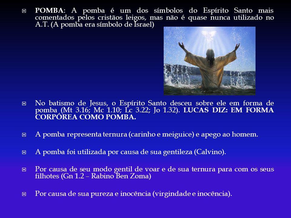 POMBA: A pomba é um dos símbolos do Espírito Santo mais comentados pelos cristãos leigos, mas não é quase nunca utilizado no A.T. (A pomba era símbolo de Israel)