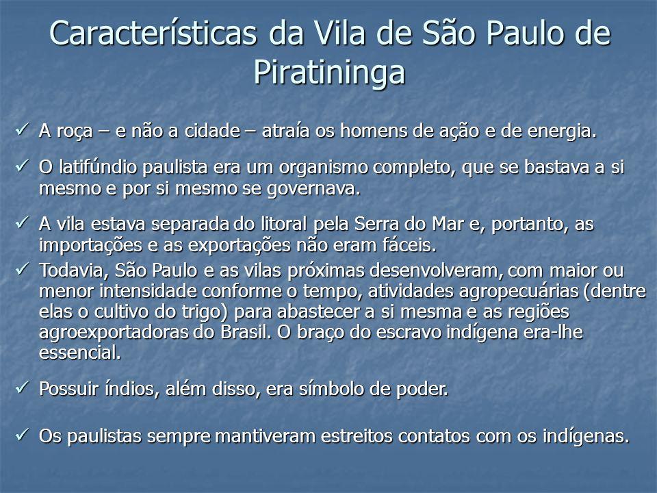 Características da Vila de São Paulo de Piratininga