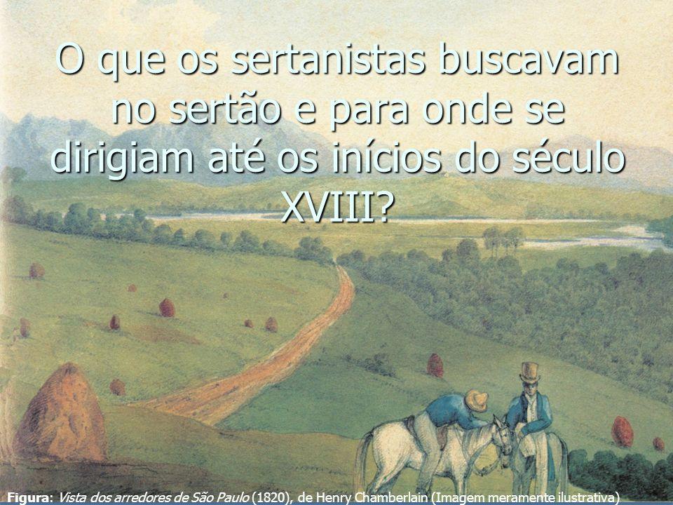 O que os sertanistas buscavam no sertão e para onde se dirigiam até os inícios do século XVIII
