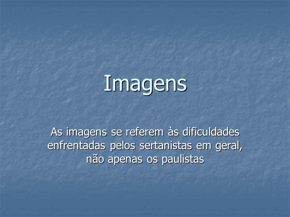Imagens As imagens se referem às dificuldades enfrentadas pelos sertanistas em geral, não apenas os paulistas.