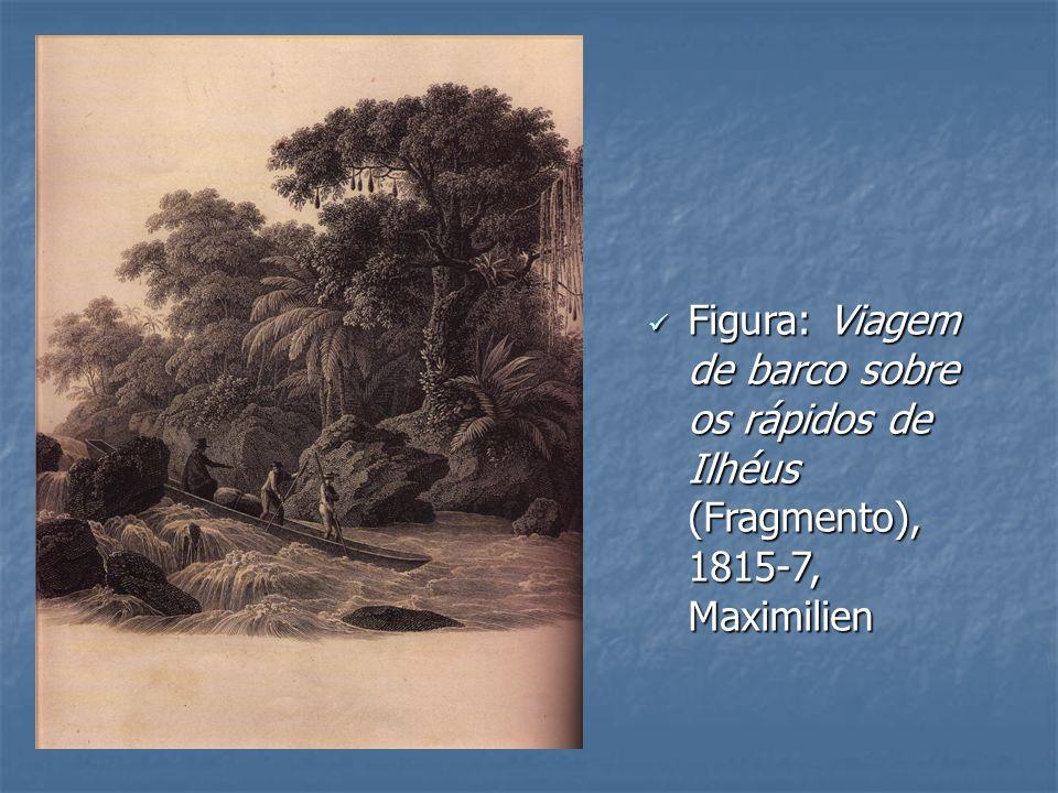 Figura: Viagem de barco sobre os rápidos de Ilhéus (Fragmento), 1815-7, Maximilien