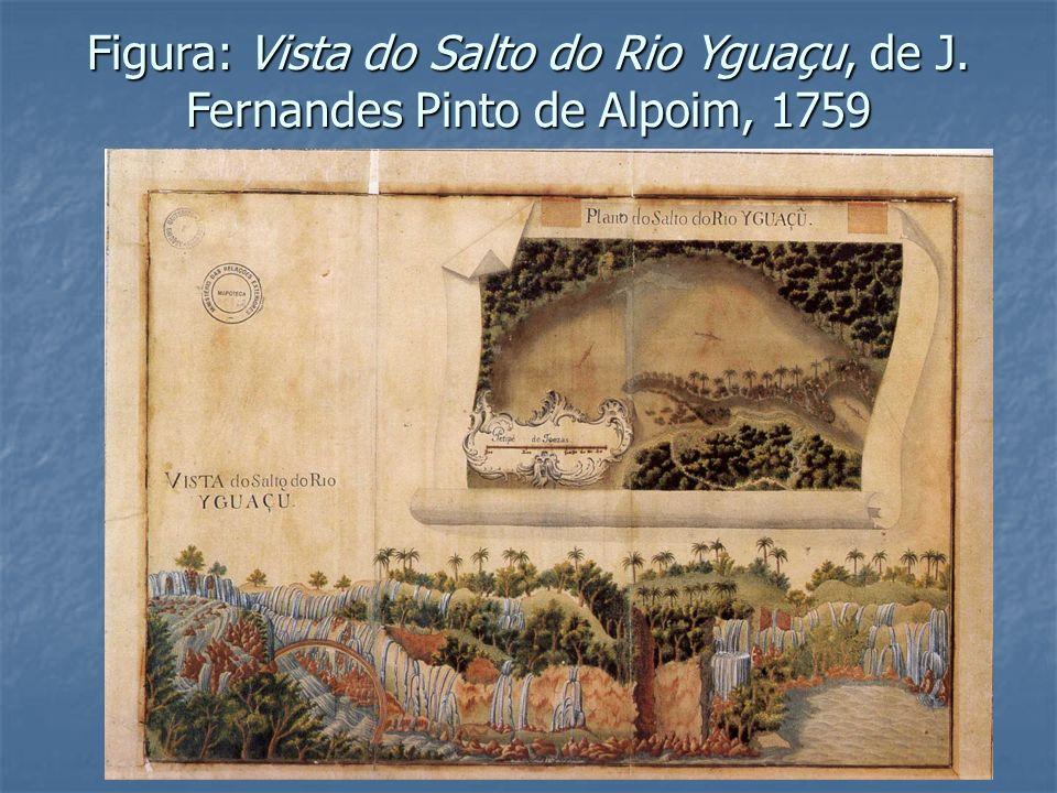 Figura: Vista do Salto do Rio Yguaçu, de J