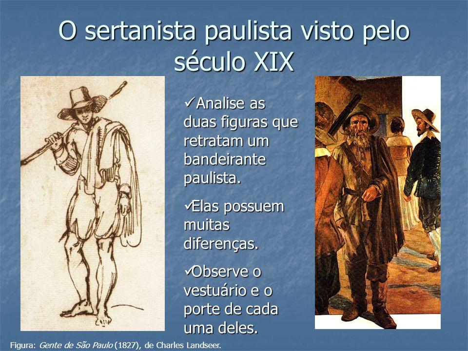O sertanista paulista visto pelo século XIX
