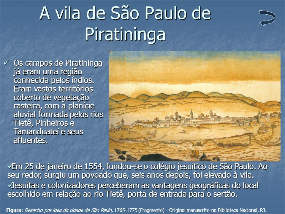 A vila de São Paulo de Piratininga