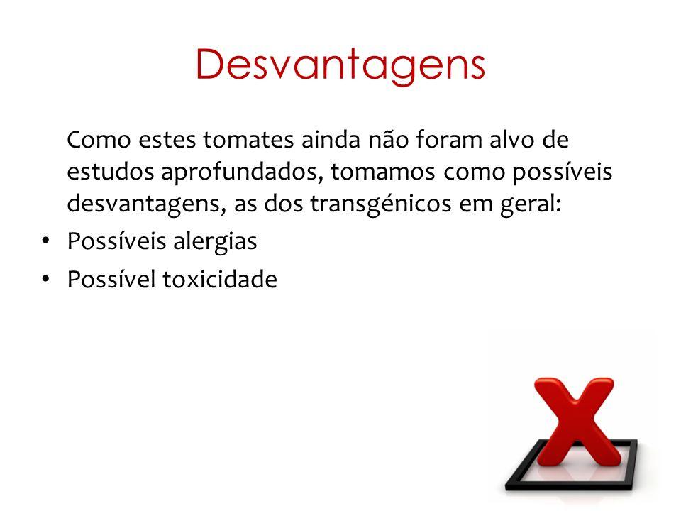 Desvantagens Como estes tomates ainda não foram alvo de estudos aprofundados, tomamos como possíveis desvantagens, as dos transgénicos em geral: