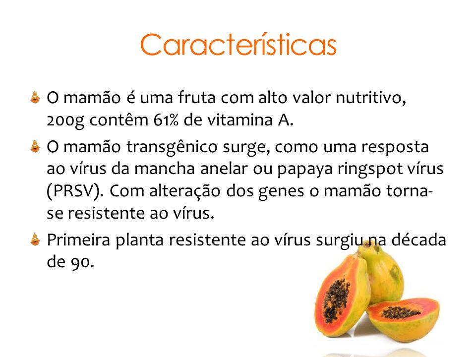 Características O mamão é uma fruta com alto valor nutritivo, 200g contêm 61% de vitamina A.
