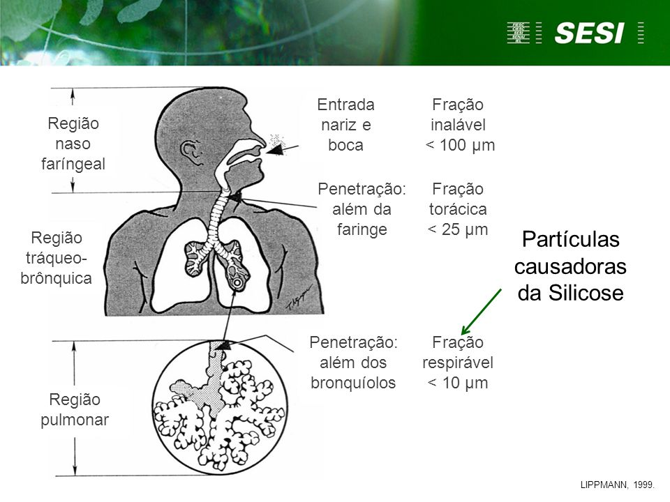 Partículas causadoras da Silicose