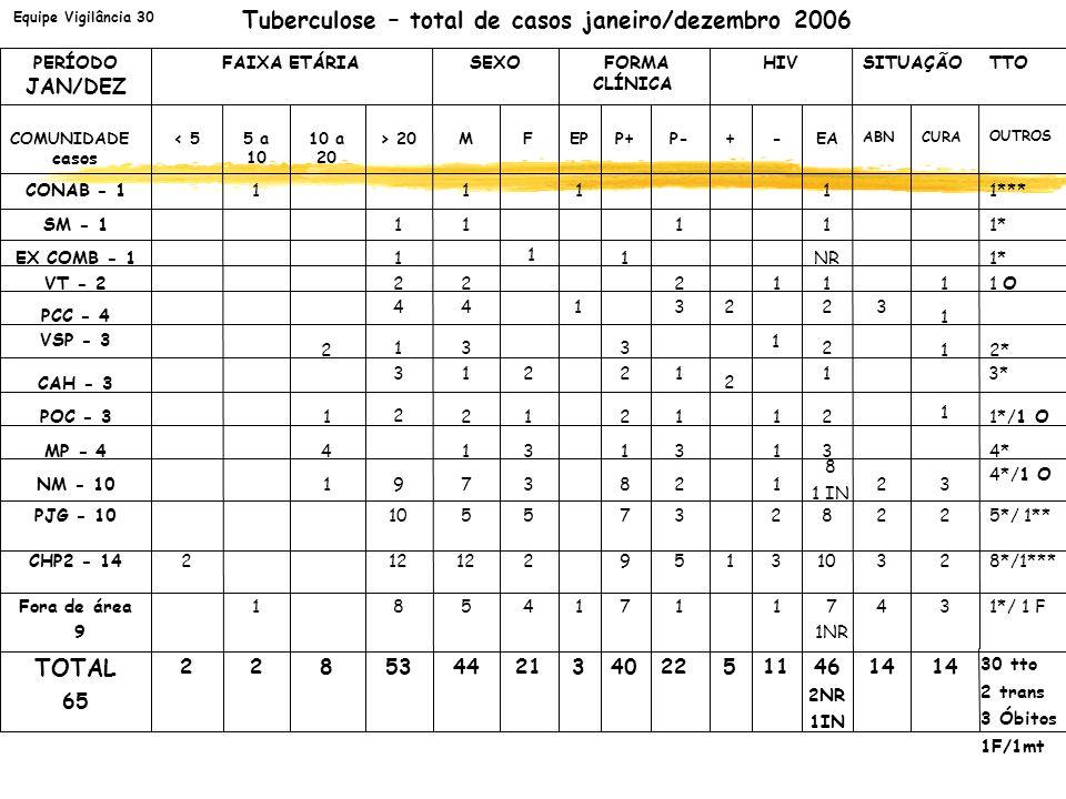 Tuberculose – total de casos janeiro/dezembro 2006