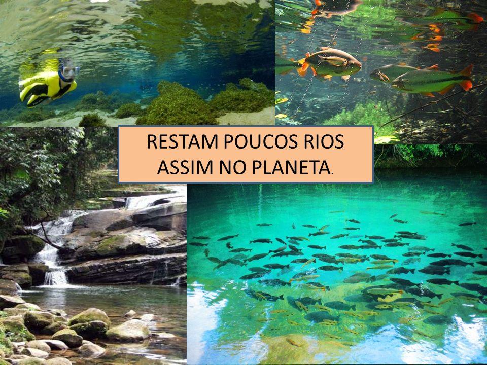RESTAM POUCOS RIOS ASSIM NO PLANETA.