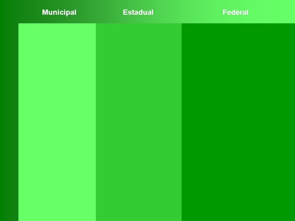 Municipal Estadual Federal