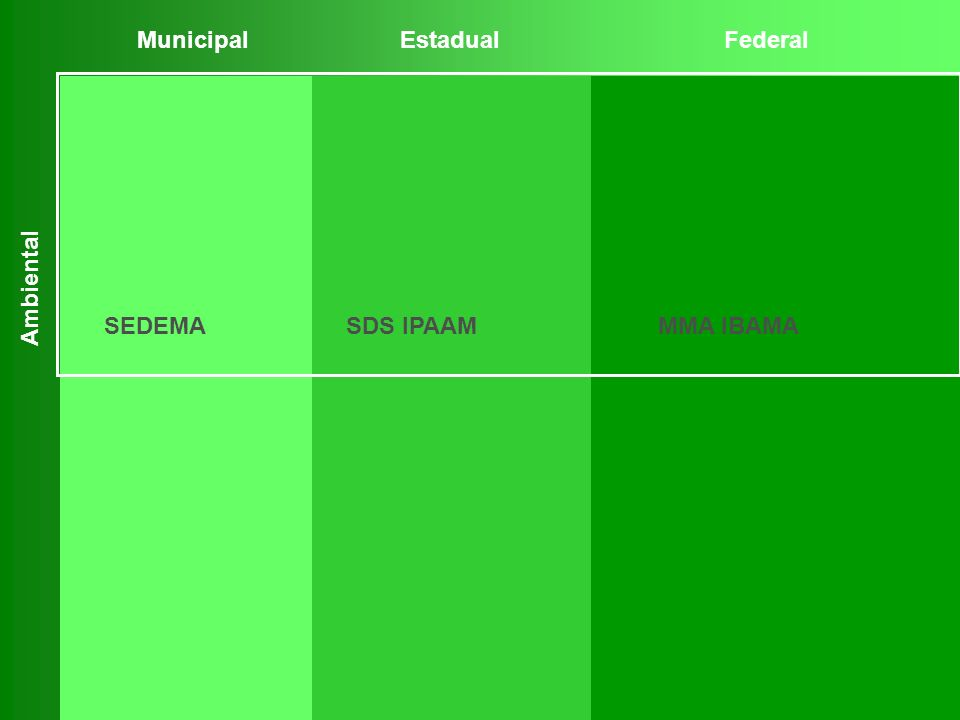 Municipal Estadual Federal Ambiental SEDEMA SDS IPAAM MMA IBAMA