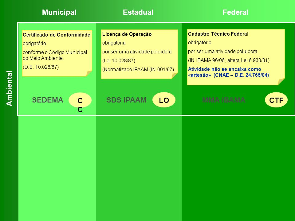 Municipal Estadual Federal CC LO CTF SEDEMA SDS IPAAM MMA IBAMA