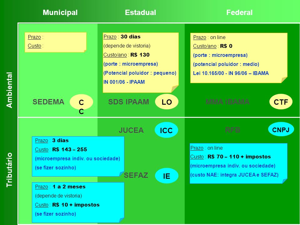 Municipal Estadual Federal Ambiental LO CTF SEDEMA CC SDS IPAAM