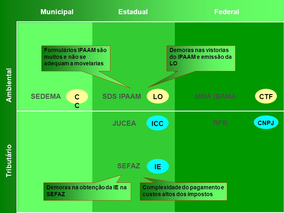 Municipal Estadual Federal Ambiental CC LO CTF SEDEMA SDS IPAAM