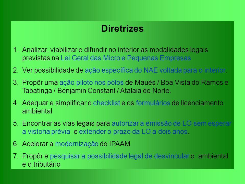 Diretrizes Analizar, viabilizar e difundir no interior as modalidades legais previstas na Lei Geral das Micro e Pequenas Empresas.