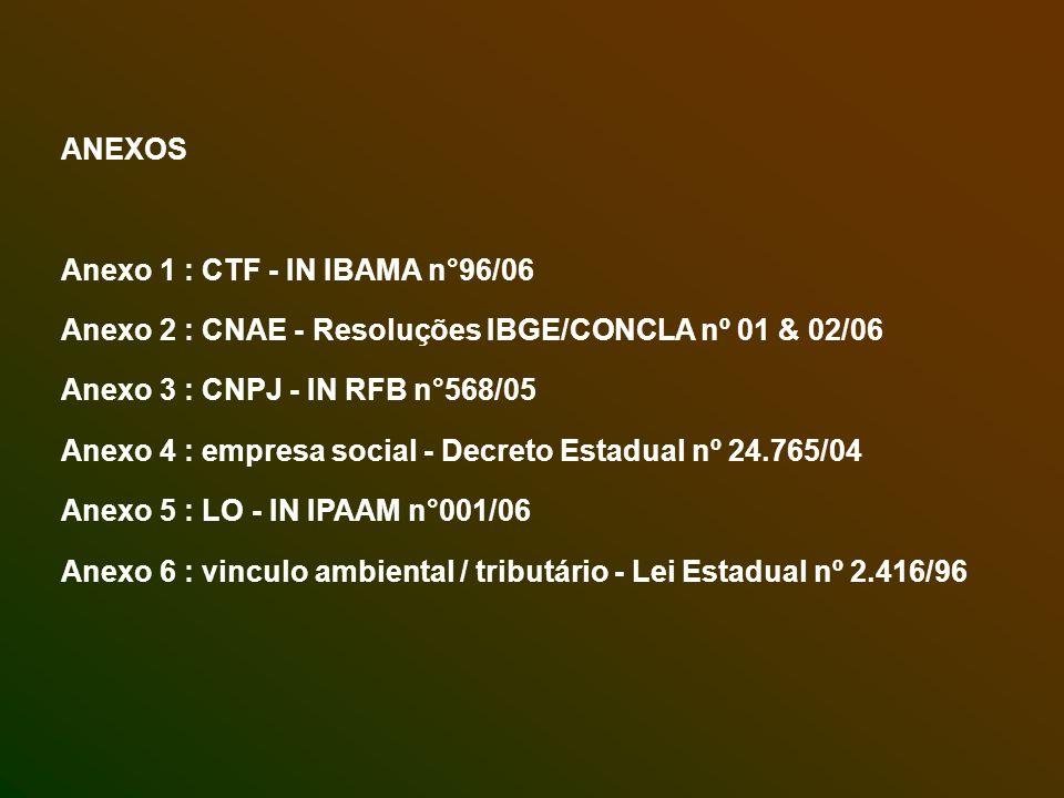 ANEXOS Anexo 1 : CTF - IN IBAMA n°96/06. Anexo 2 : CNAE - Resoluções IBGE/CONCLA nº 01 & 02/06. Anexo 3 : CNPJ - IN RFB n°568/05.