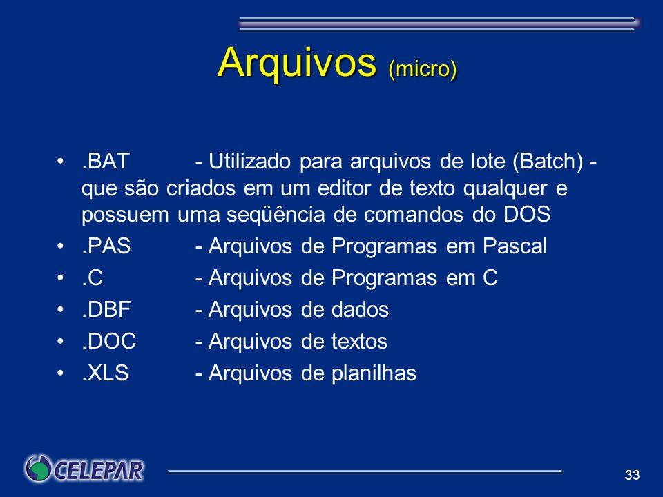 Arquivos (micro)