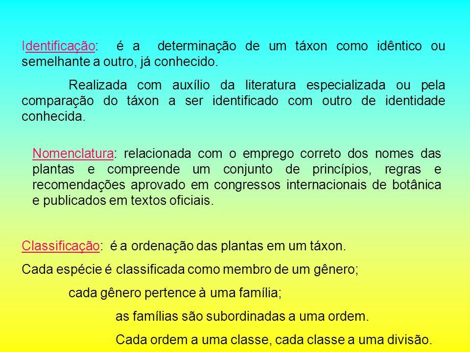 Identificação: é a determinação de um táxon como idêntico ou semelhante a outro, já conhecido.