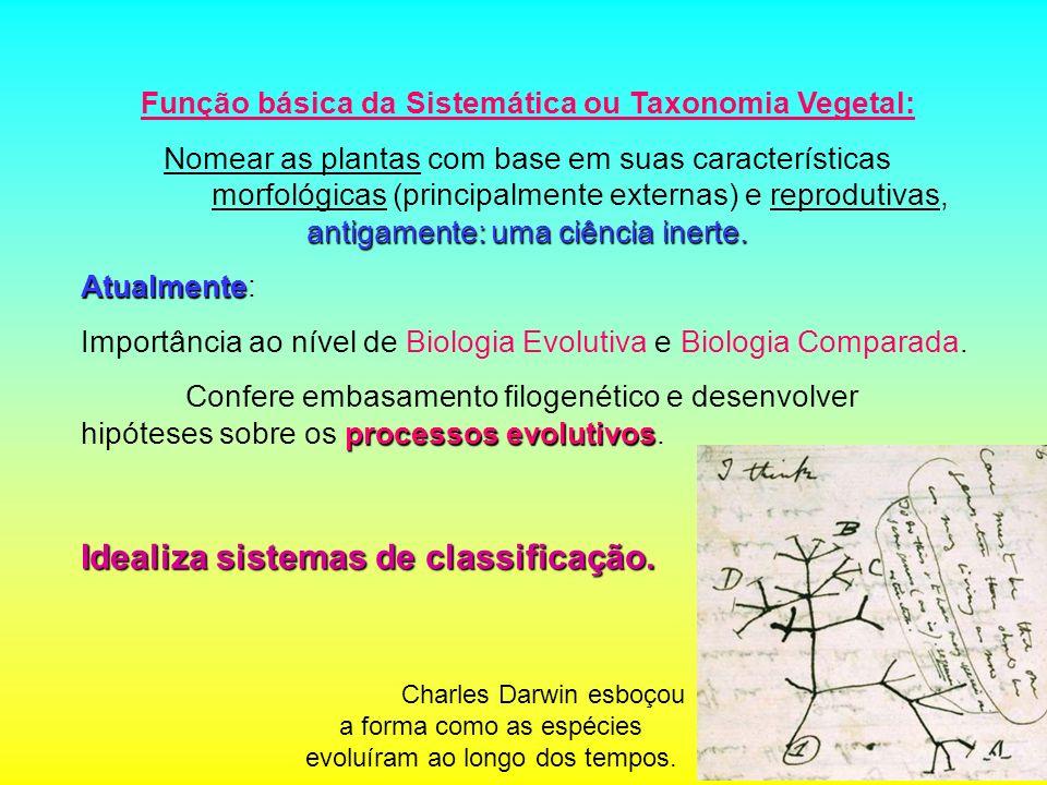 Função básica da Sistemática ou Taxonomia Vegetal:
