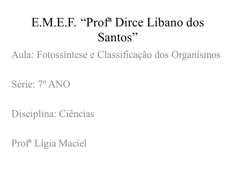 E.M.E.F. Profª Dirce Libano dos Santos