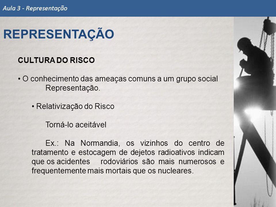 REPRESENTAÇÃO CULTURA DO RISCO
